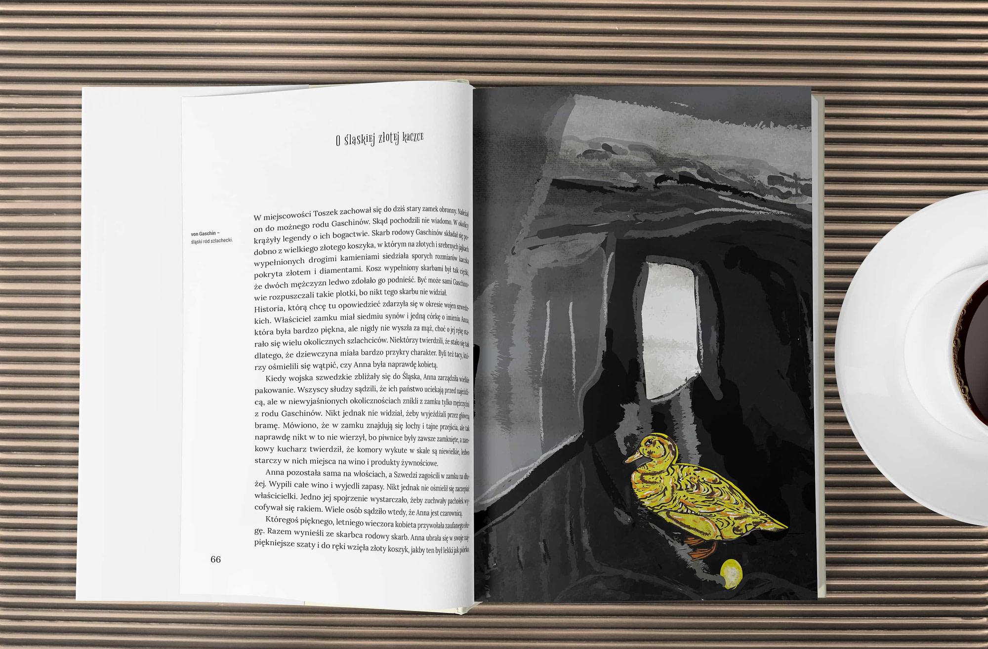Idelii Grafika Projektowa Projekt książki i ilustracji Ilustracja Śląska Złota Kaczka